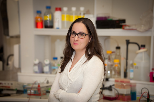 Jeanette Boudreau in the lab