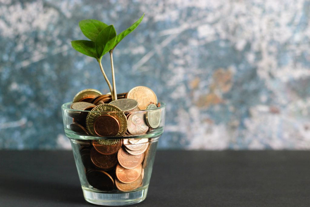 money in a jar with a plant growing from it